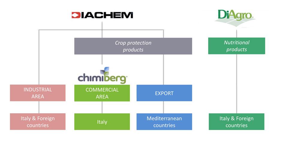diachem_struttura_ENG