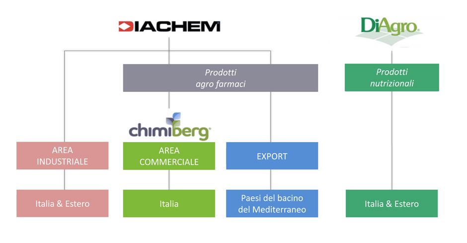 diachem_struttura_ita